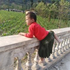 Lung Cam
