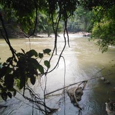 Rapids en saison sèche