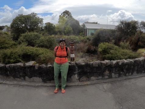Grimaces maories