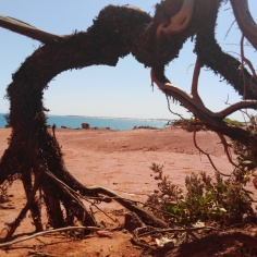 Broome beaches