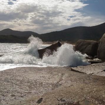 Les vagues à l'action !